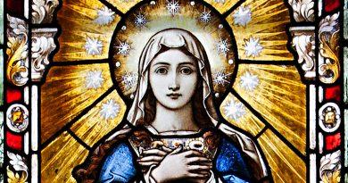 Một bài suy niệm hay mừng Lễ Đức Mẹ Vô Nhiễm